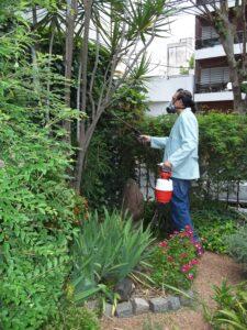 fumigacion de jardines 3_jpg